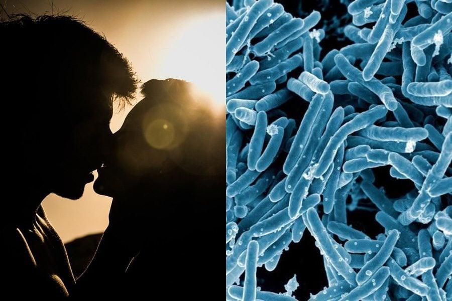 Kiss Bacteria