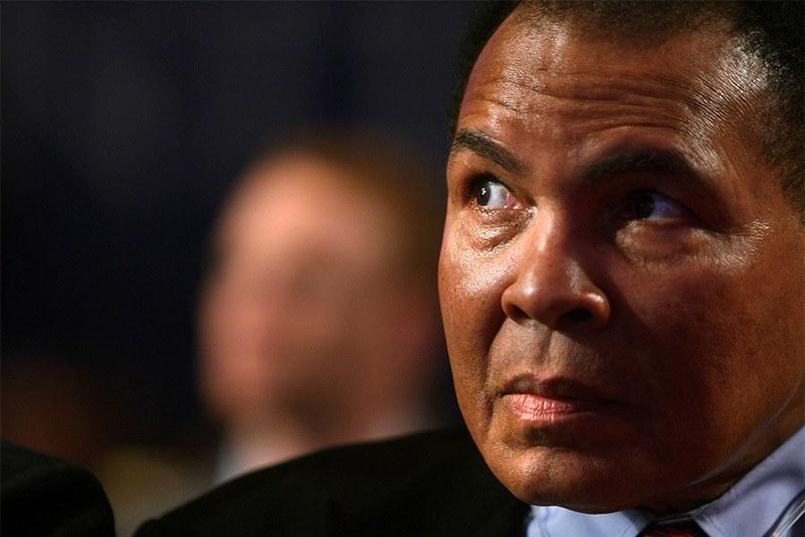 Muhammed Ali Fighter