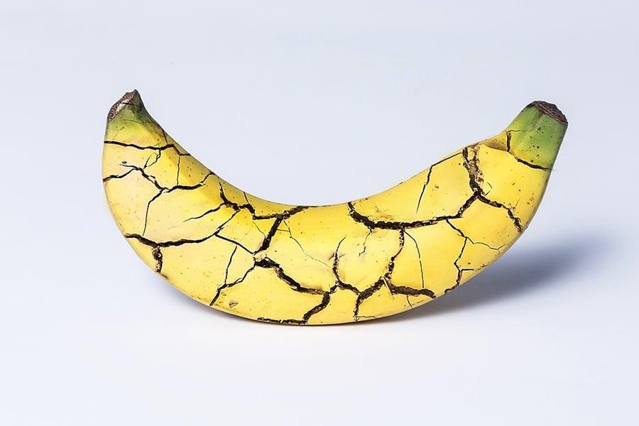 Shattered Banana