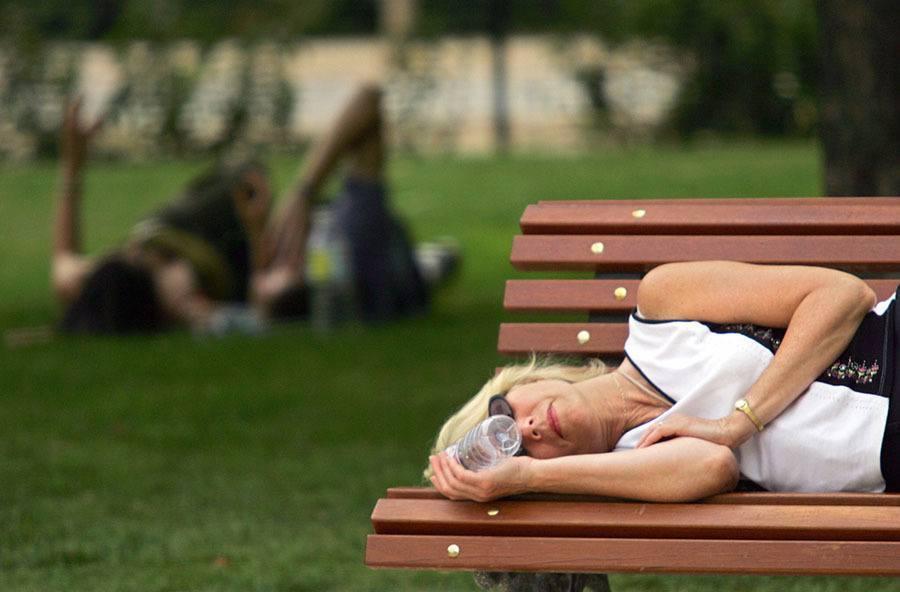Sleep Park Bench