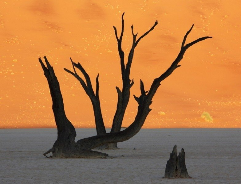 Surreal Landscapes Namibia