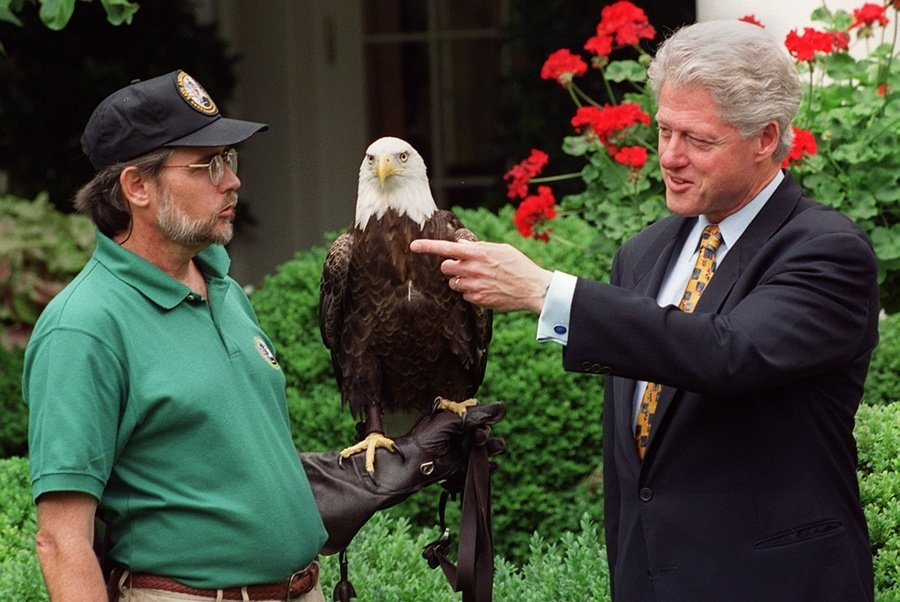 Bill Clinton American Eagle