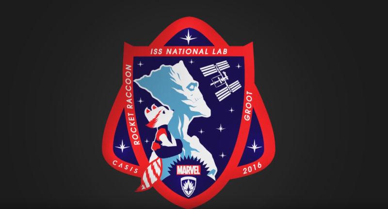 nasa insignia patch - photo #43