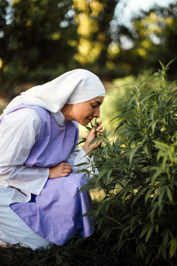 California Weed Nuns 3