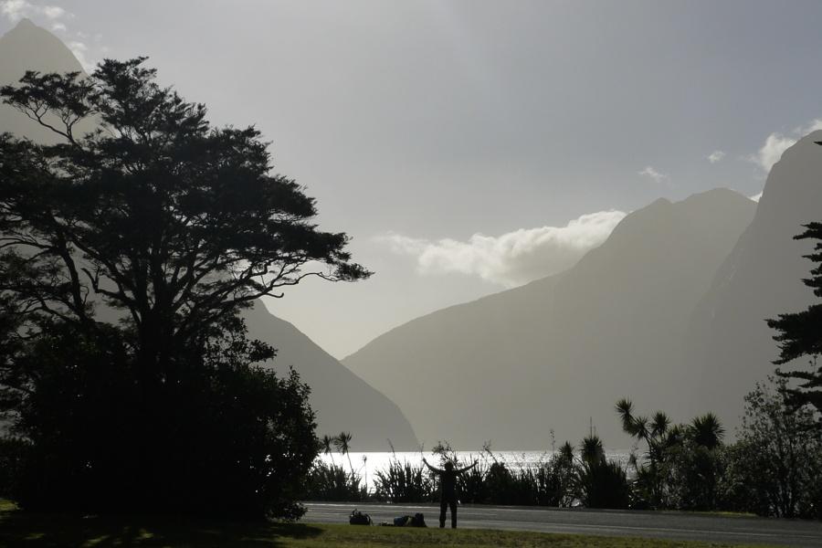 Mountains Trees Silhouettes