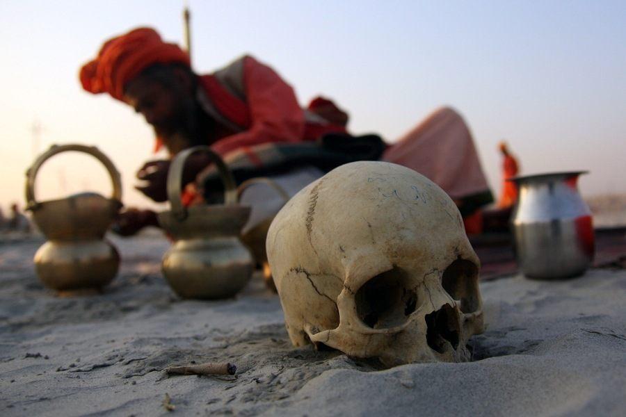 Skull In Sand