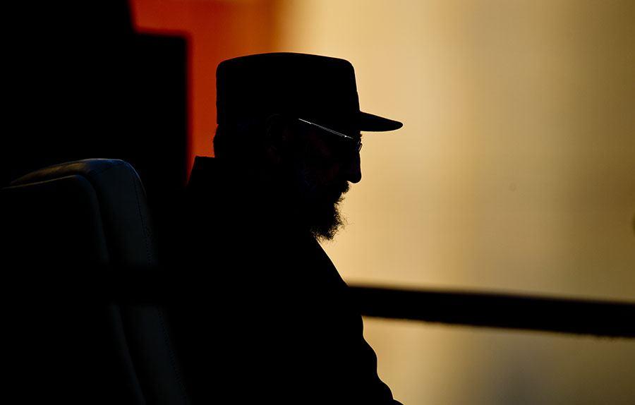 Stoic Fidel Profile