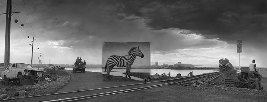 Road To Factory With Zebra 2014 4000px