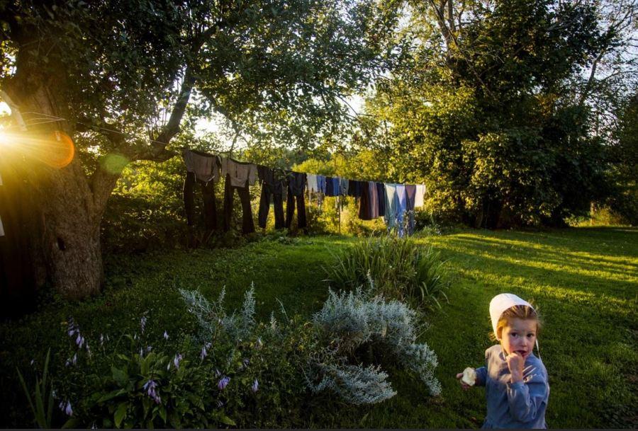 Amish Laundry Line
