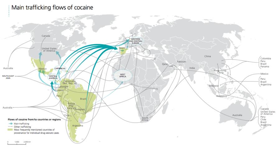 cocaine flow coca cultivation global