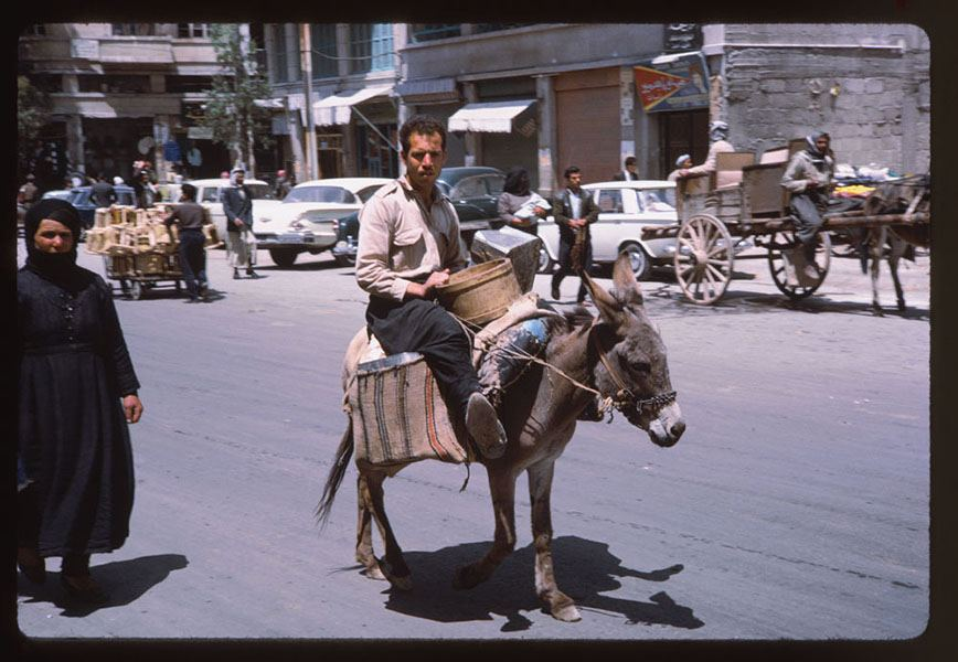 Syria Man On Donkey