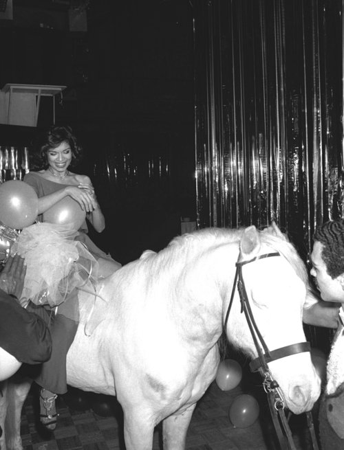 Birthday On Horse