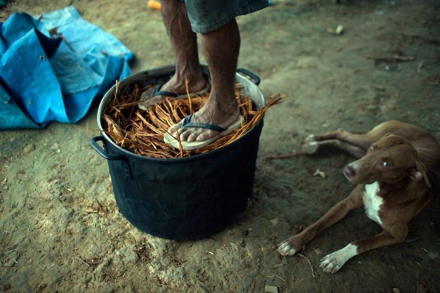 Feet On Brewing Pot