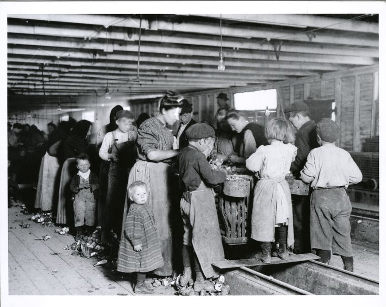 Oyster Cannery