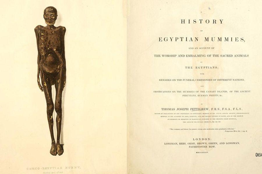Pettigrew Mummy Histories Pic