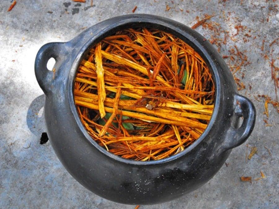 Pot To Be Brewed Ayahuasca