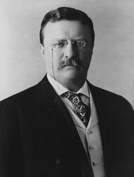 Roosevelt Portrait