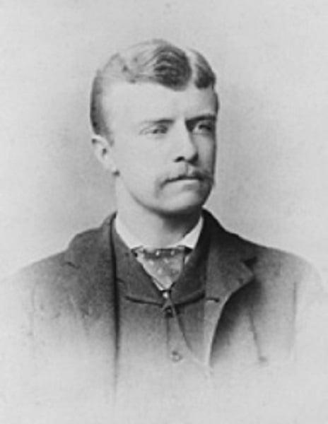 Roosevelt State Assemblyman