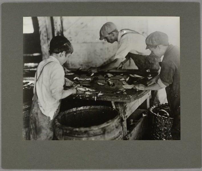 Sardine Cannery