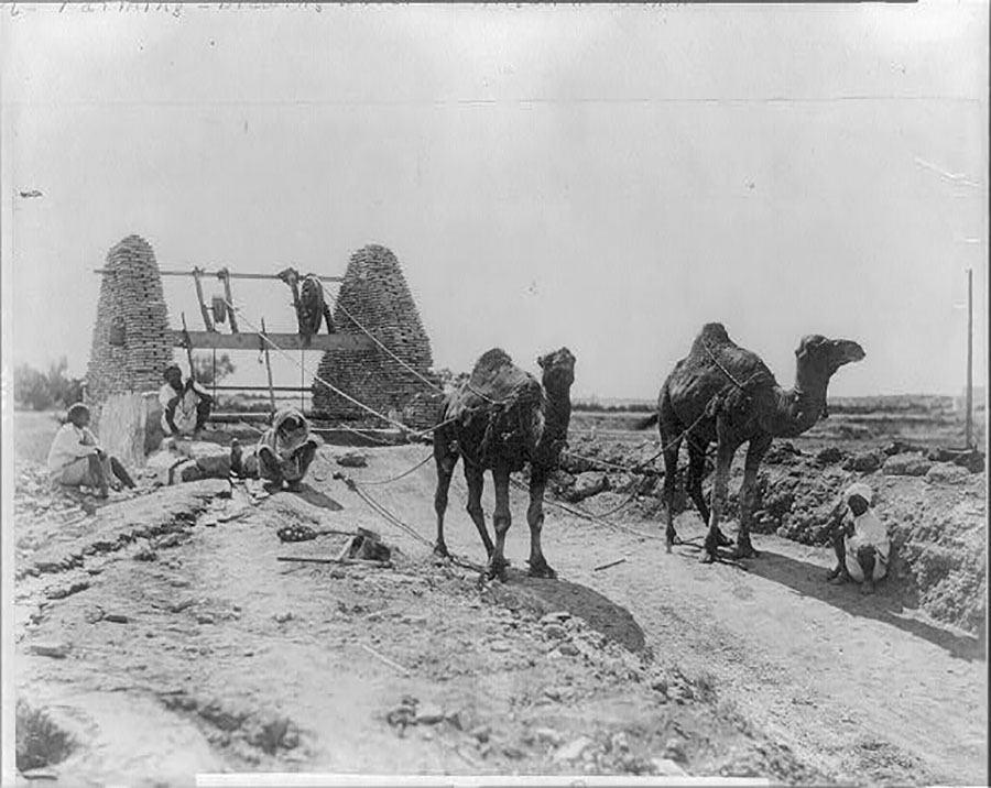 1905 Egypt