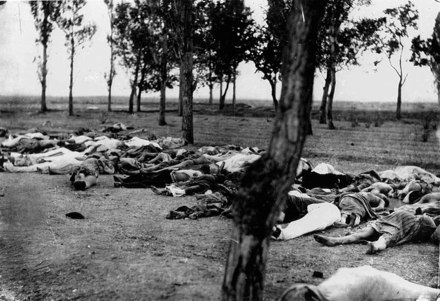 Bodies On Ground