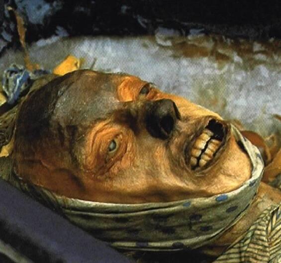 Face Of Franklin Expedition Mummy John Torrington