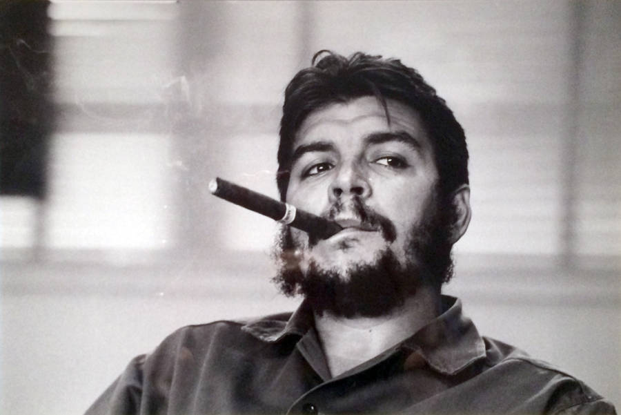 Guevara Cigar