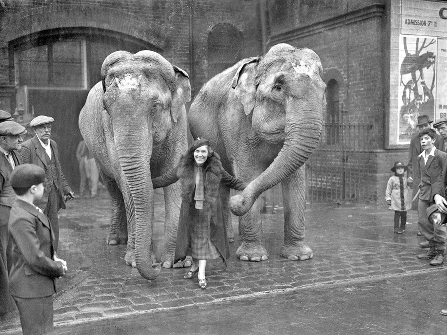 Maria Rasputin With Elephants