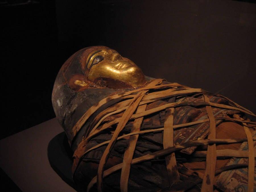 Mummy Wrapped