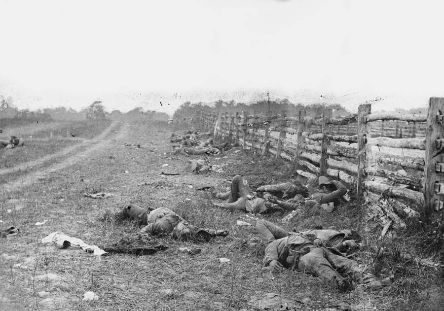 Antietam Bodies