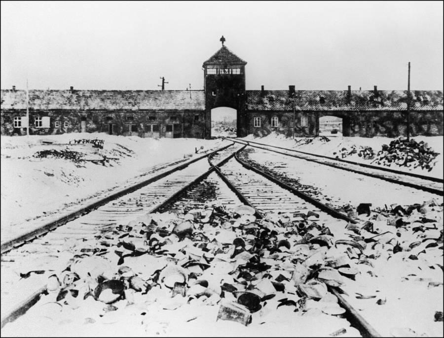 Auschwitz Entrance Tracks