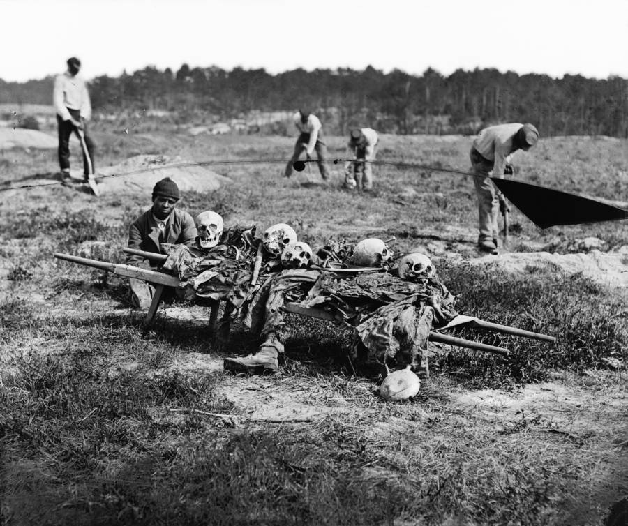 Cold Harbor Collecting Bones