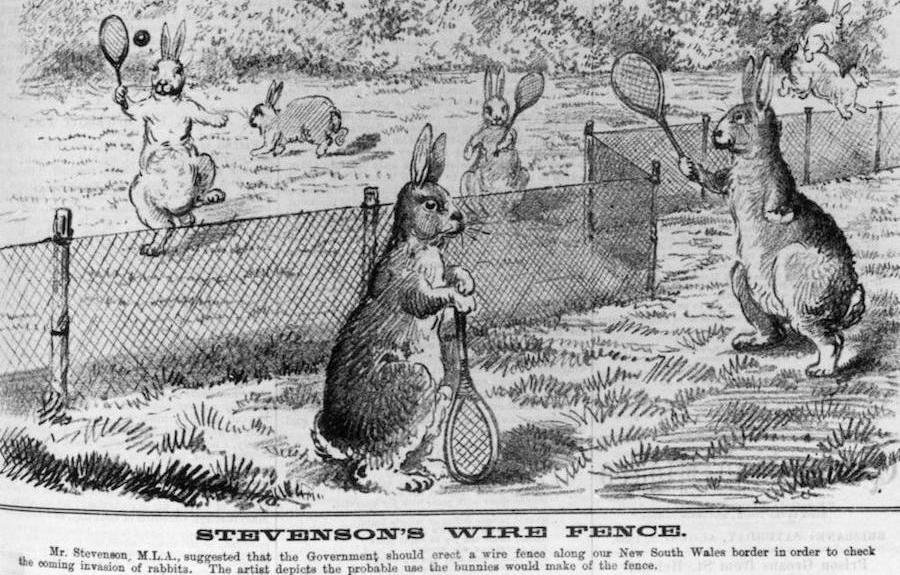 Stevenson Wire Fence