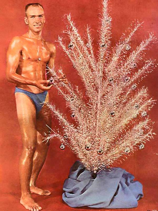 Tree Underwear