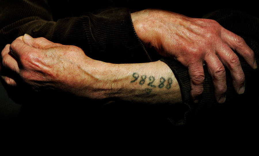 one third of holocaust survivors in the u s live in poverty
