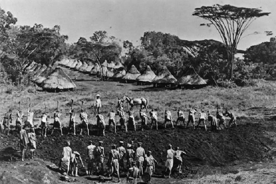 Kikuyu Genocide Forced Labor