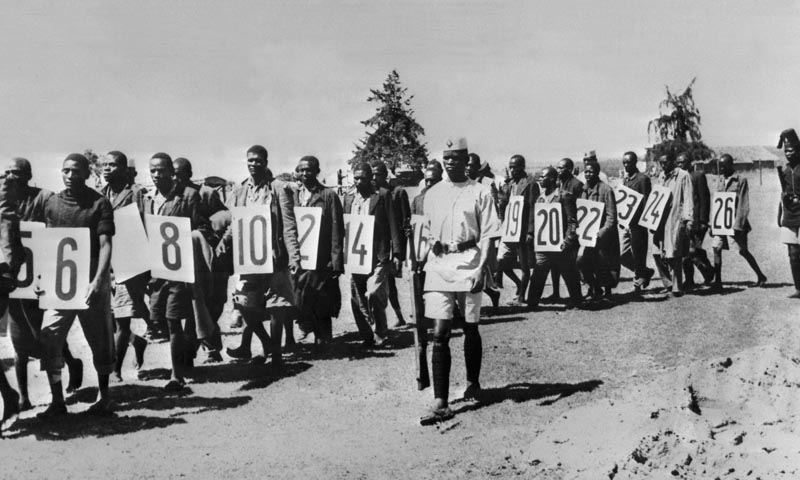 Kikuyu Genocide Numbered Prisoners