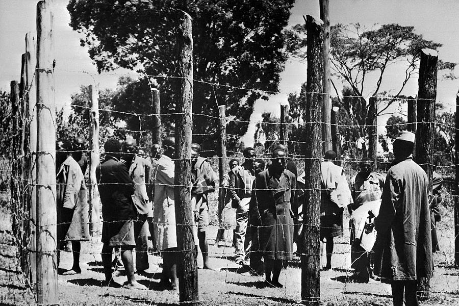 Kikuyu Genocide Penned Up