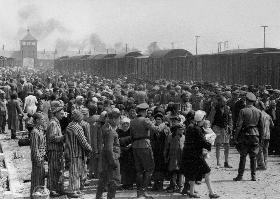 Large Concentration Camp Crowd