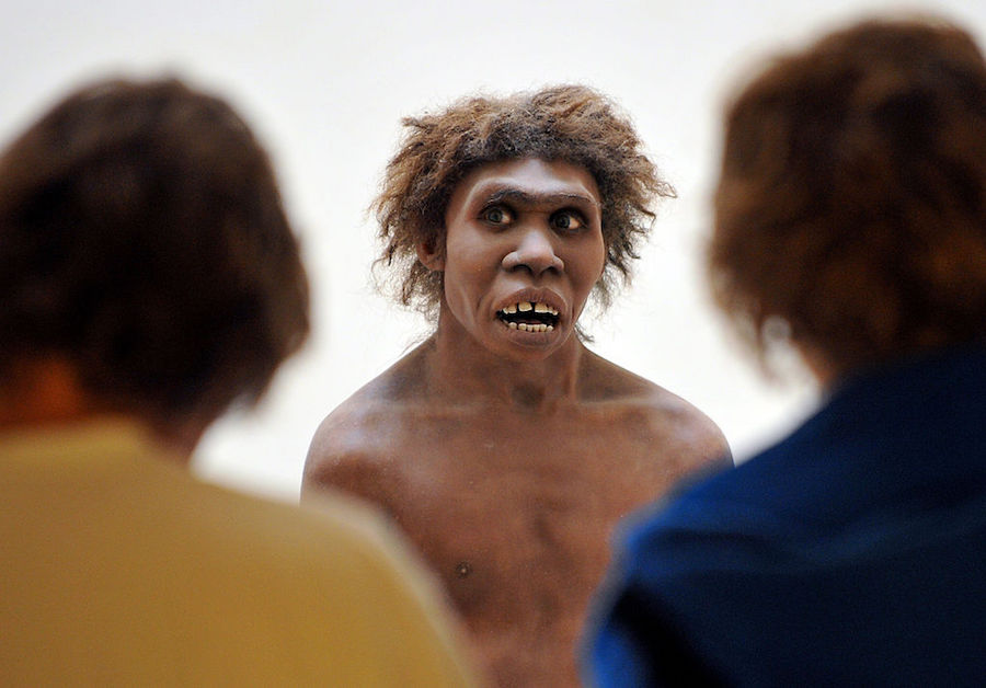 Neanderthal Big