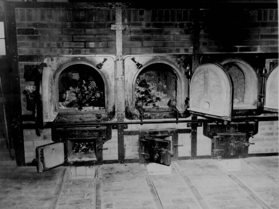 Ovens Containing Bones