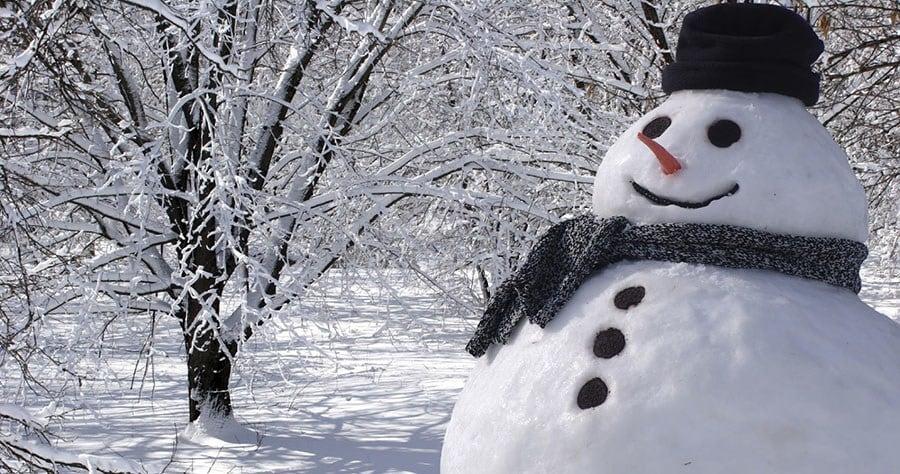 Cheerful snowman   Stock Vector   Colourbox