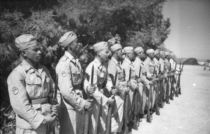 Free Arabian Legion Soldiers Lined Up