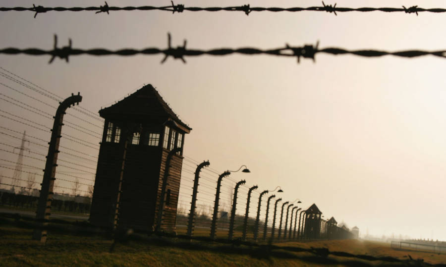 Auschwitz Towers