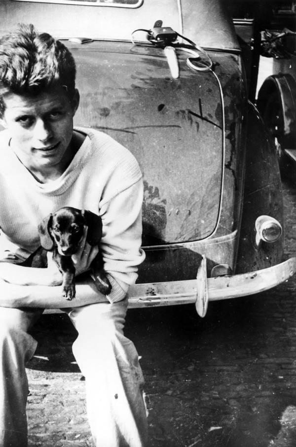 Kennedy Small Dog