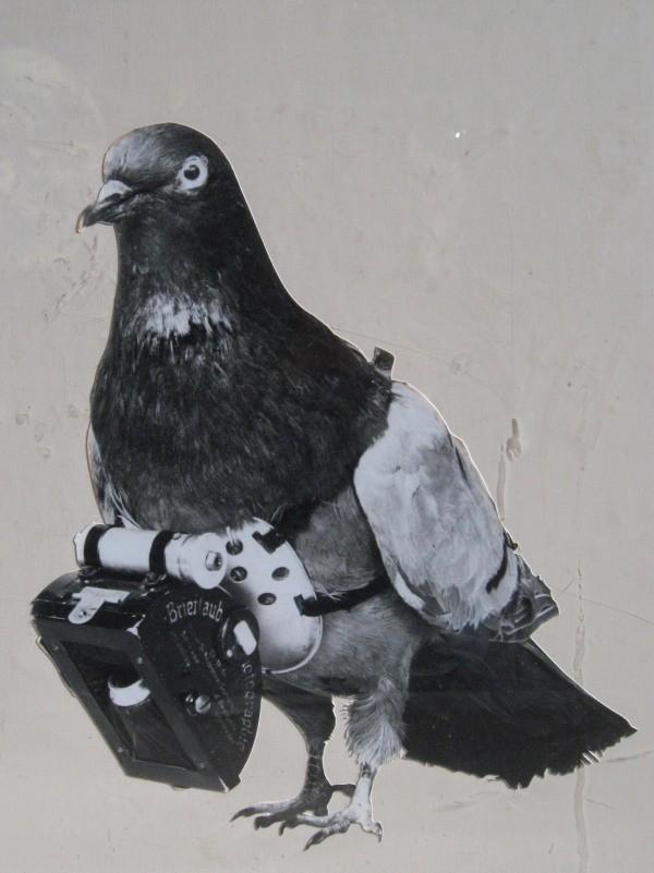 Miniature Pigeon Camera Timing Mechanism