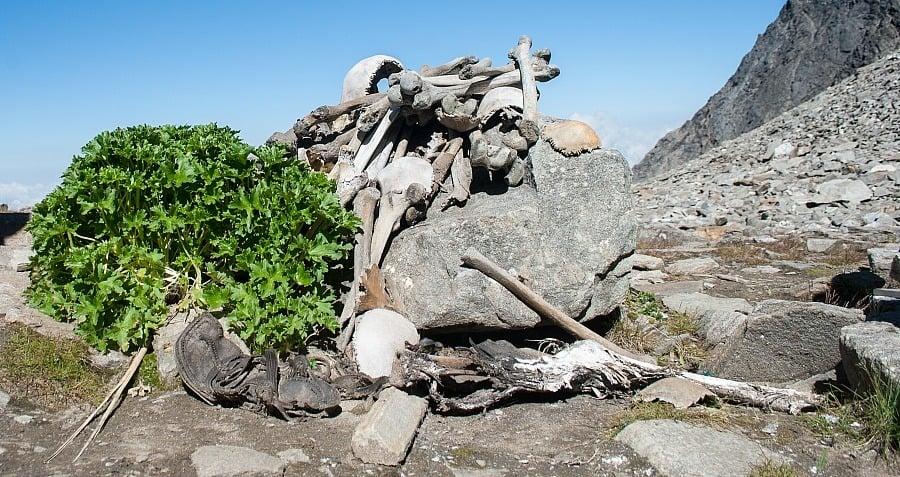 Skeletons Rocks Roopkund Lake Remains