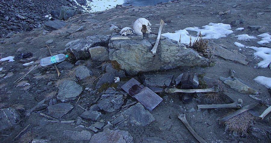 Skull Bones Rocks Remains Roopkund Lake
