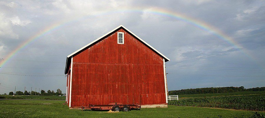 Why Are Barns Painted Red