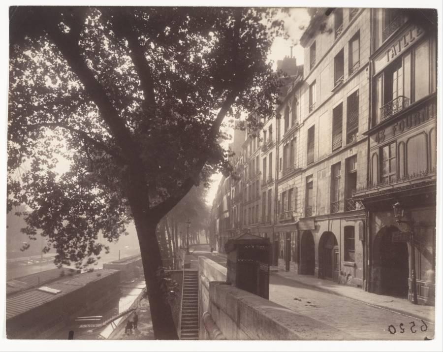 Eugène Atget Tree Bank